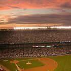 Yankee Stadium The Last Year by mikepaulhamus