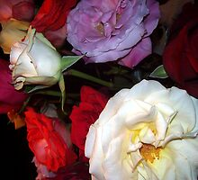 My Roses 6 by Mariam Muradian