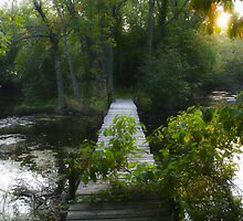 Footbridge to Nowhere by Mary Kaderabek-Aleckson