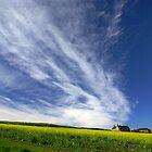 Cornwall by M G  Pettett