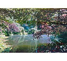Pool in Sunshine, Butchart Gardens, BC, Canada Photographic Print