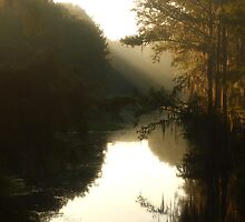 Louisiana Bayou Sunrise by KSkinner