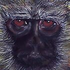 VERVET MONKEY by Mariaan Maritz Krog Fine Art Portfolio