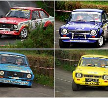 CORK 20 RALLY . 2008 by TIMKIELY