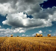 hay bales by imaginaryfriend