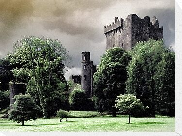 Blarney Castle by Garth  Helms