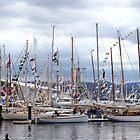 Hobart's wooden boat festival (8 Feb 2015)  by gaylene