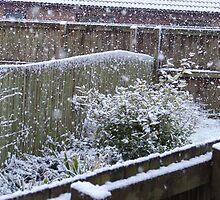 Winter's Day by David Fulton