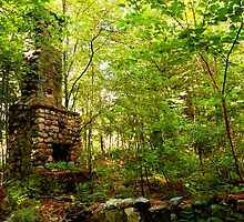 Fireplace in Woods by Jeannette Sheehy