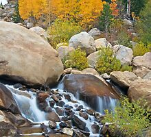 Fall Along the Alluvial Fan by Gary Lengyel