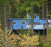 Caboose Cabin by Anita Donohoe