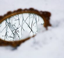 Ornate mirror in the snow by Jacqueline Moore