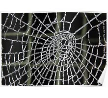 Frozen Spider Web . Poster