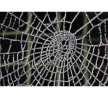 Frozen Spider Web . Photographic Print