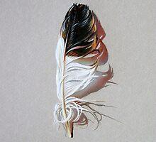 Feather & shadow #3 by Elena Kolotusha