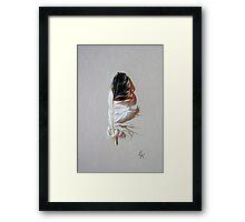 Feather & shadow #3 Framed Print