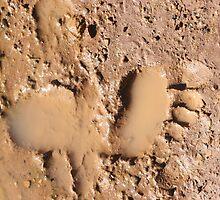 Mud Print by Rachael Taylor