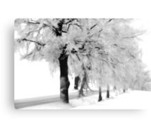 When the snow falls Canvas Print