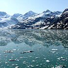 Glacier Bay, Alaska by Liz Wear