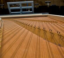 Harpsichord Guts 2 by dubya13