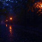 Dusk in the park by aratma