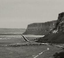 Road Trip by Aimee Stewart