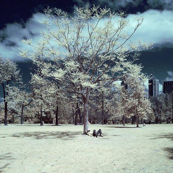 Resting Tree by Reynandi Susanto