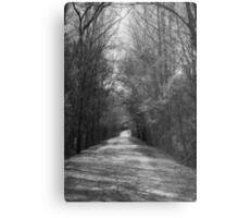 Palmetto Trail In Florence, SC Metal Print