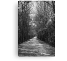 Palmetto Trail In Florence, SC Canvas Print