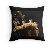 Bornella anguilla, far northern Great Barrier Reef Throw Pillow