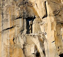 The Wall (El Capitan, Yosemite, USA) by Erwin G. Kotzab