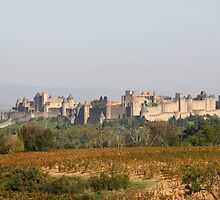 Medieval City of Carcassonne (Aude) by Fran0723