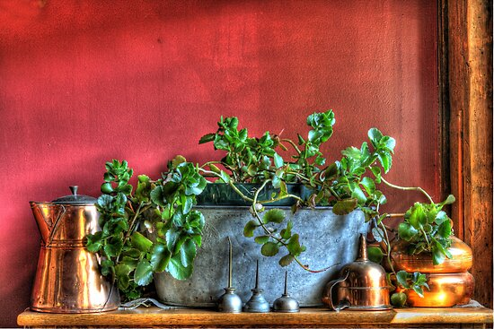 Oil Cans by BigD