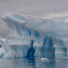Iceburg by leanneinnes