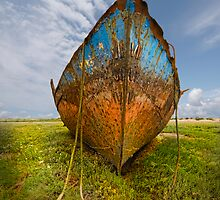 Old Fishing Boat Wrecks by eddiej