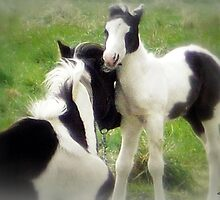 Baby Love by naturelover