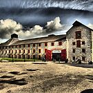 Jameson Distillery by mikeloughlin