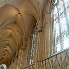 York Minster by Julie M Gibson
