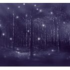 the enchanted forest by Adriana Glackin