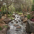 Garden Stream by Keith Smith