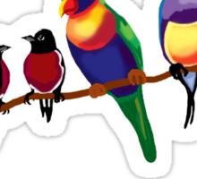 Aussie birds Sticker