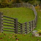 Stackable Fence....... from HOME DEPOT!!!???? by Larry Llewellyn