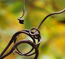 Entanglement by Johanne Brunet