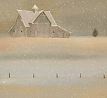 """Quiet Snow"" Old Barn on the Farm by ToniGrote"