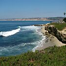 La Jolla  The Jewel by Jan  Wall