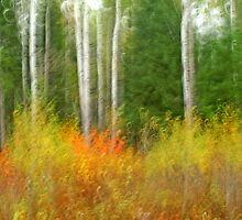 Fall Fire by Bill Morgenstern