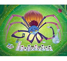 Spider Solitaire Photographic Print