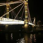 Albert Bridge, River Thames, London. by Colin J Williams Photography
