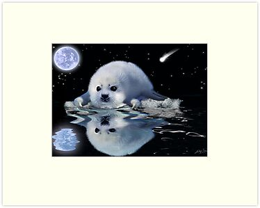 DESTINY The Harp Seal by Skye Ryan-Evans