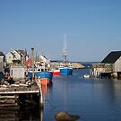Village of Peggy's Cove by Geoffrey